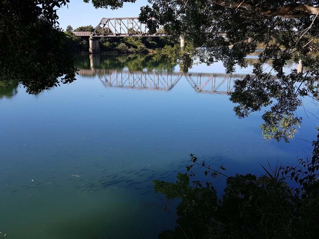 2018 10 08 Rail bridge mullet